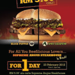 Burger King One-Day Promotion